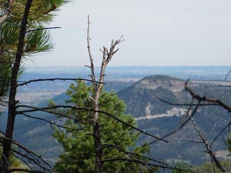 13670 Spruce Creek Circle - Photo 11