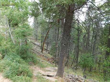 13670 Spruce Creek Circle - Photo 23