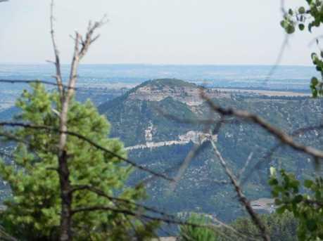 13670 Spruce Creek Circle - Photo 13