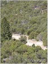18417 Mule Deer Road - Photo 19