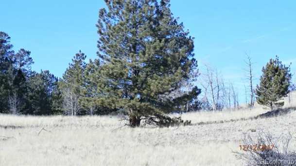 195 Saddle Horn Rd - Photo 9