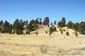 1282 Fremont County Road 169A - Photo 5