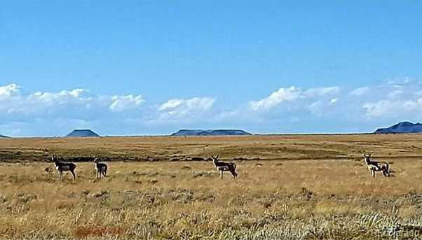 24 Osage Trail - Photo 11