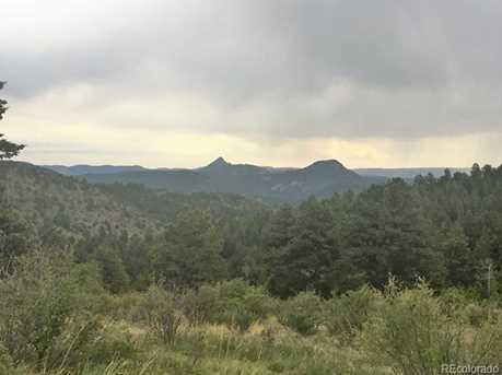 14714 Wetterhorn Peak Trail - Photo 19