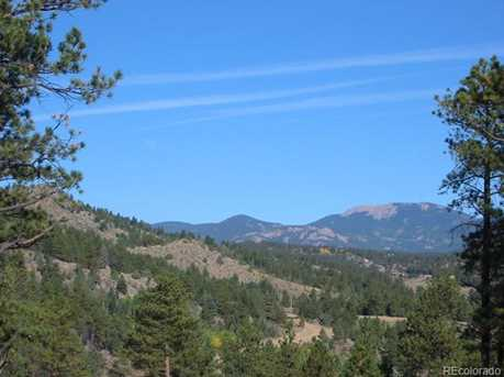14714 Wetterhorn Peak Trail - Photo 9