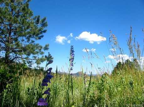 14714 Wetterhorn Peak Trail - Photo 13