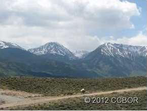 445 Mt Hope Drive - Photo 3