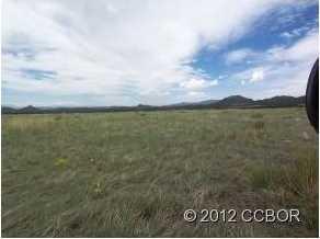 189 Deer Springs Circle - Photo 7