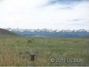 189 Deer Springs Circle - Photo 5