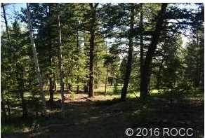 3826 Campfire Rd - Photo 7