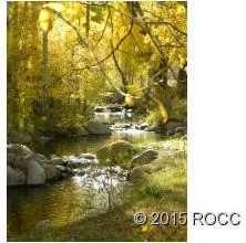 17470 Reserve Drive - Photo 11