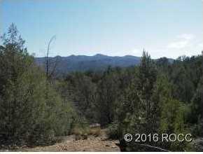 947 High Peaks Ranch Road - Photo 3