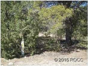 947 High Peaks Ranch Road - Photo 7