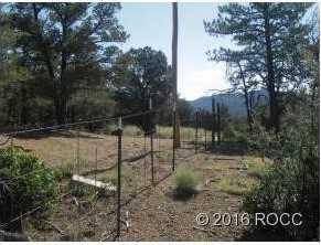 947 High Peaks Ranch Road - Photo 9