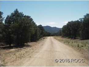 947 High Peaks Ranch Road - Photo 5