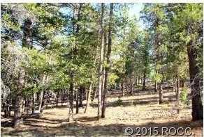 30240 Eagles Ridge - Photo 1