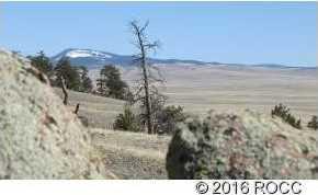 920 Pack Saddle Road - Photo 3