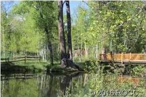 17403 Reserve Drive - Photo 13