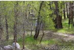 17403 Reserve Drive - Photo 5