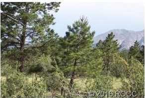 30531 Mountainside - Photo 3