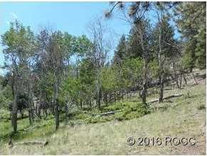 30269 Eagles Ridge - Photo 7