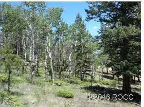 30269 Eagles Ridge - Photo 9