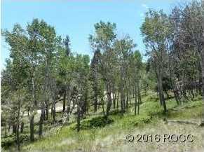 30269 Eagles Ridge - Photo 3