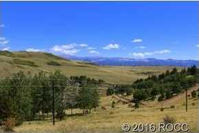 4780 County Road 352A - Photo 3