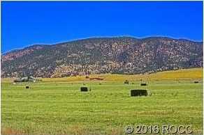 10748 County Road 155 - Photo 15