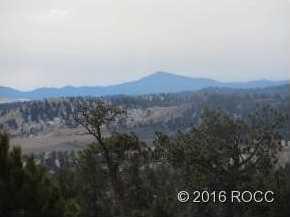 Satanta Trail - Photo 7