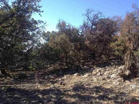 1743-1746 Willow Creek Way - Photo 5