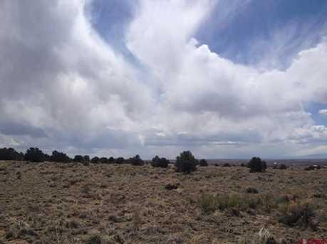 3402 Camino Del Rey - Photo 5