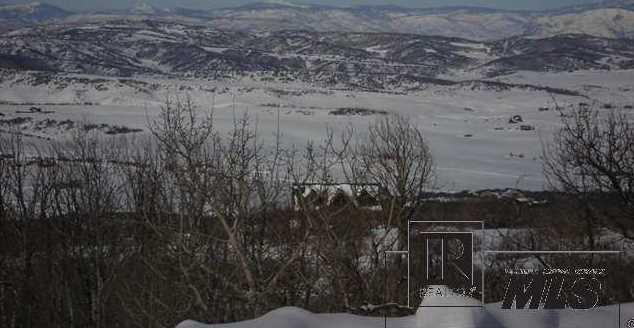 27445 Sundance Trail - Photo 11