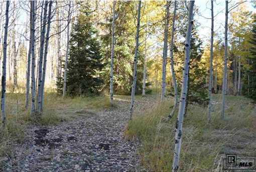Tbd Colt Trail - Photo 7