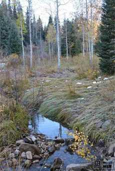 Tbd Colt Trail - Photo 3