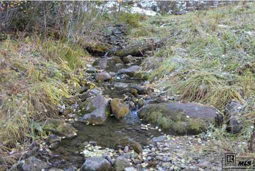 Tbd Colt Trail - Photo 9