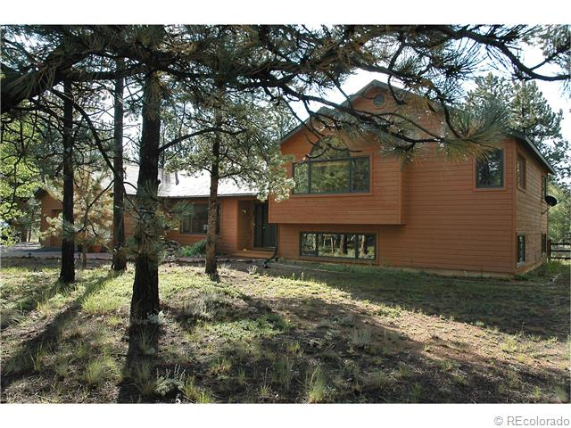 482 tincup terrace bailey co 80421 mls 1053383