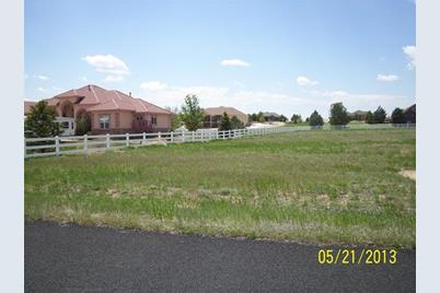 14563 Meadow Woods Street - Photo 1