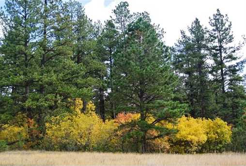 1856 Gold Camp Way - Photo 1