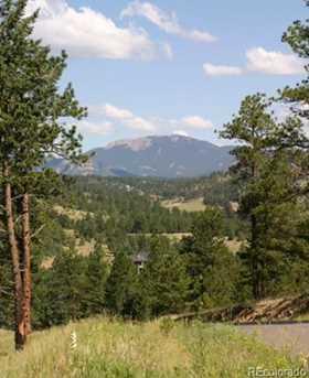 32333 San Luis Peak Trail - Photo 1