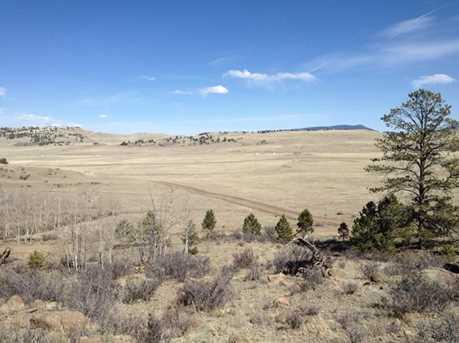 1033 Kinkehee Trail - Photo 1