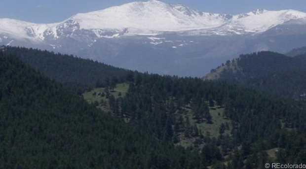 26466 Sweetbriar Trail - Photo 1
