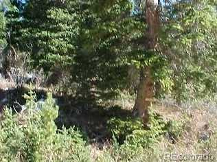 Lot 34 Mine Road - Photo 1