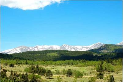 4 Bald Mountain Road - Photo 1