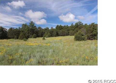 1139 18th Trail - Photo 1