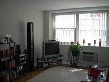 253 East Delaware Street #6A - Photo 3