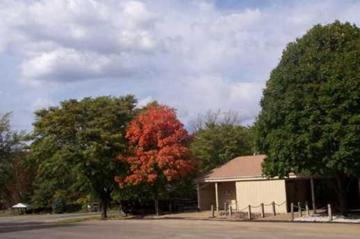 1677 Lake Side Court - Photo 15