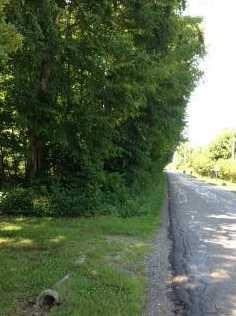 8500 McOwen Road - Photo 18