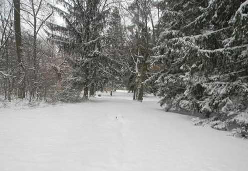 154 Woodside SW Drive - Photo 15