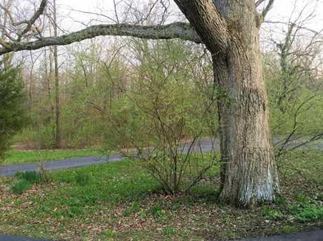 8400 Concord Road - Photo 9